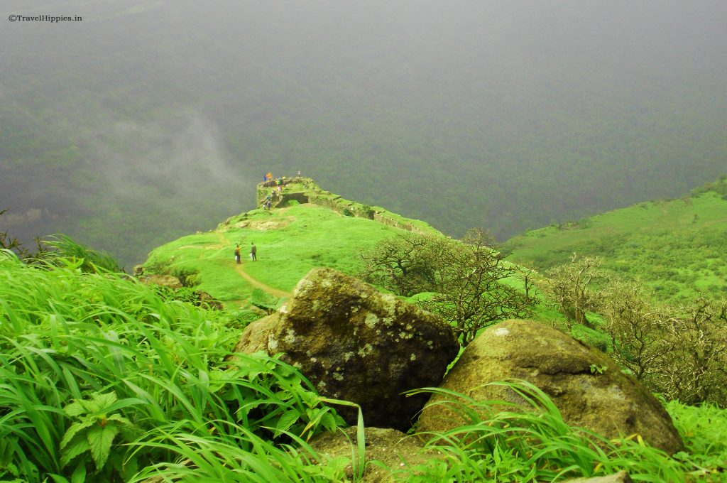 Rajmachi Trek and camping