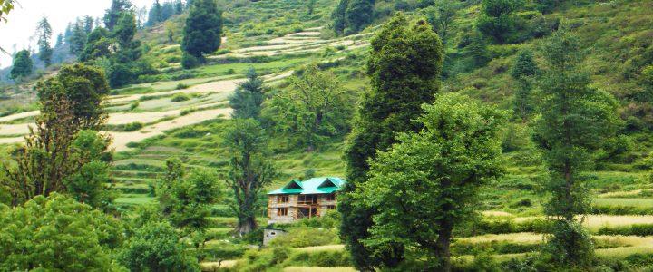 Grahan Village - Himachal