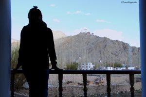 best hotels in Leh